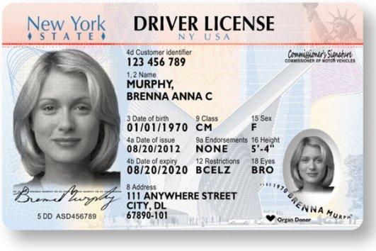 New NY License